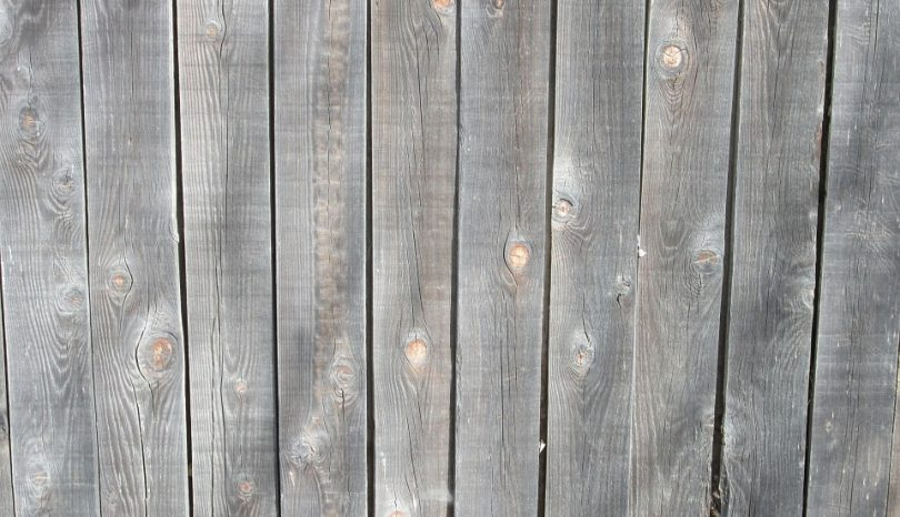 7 Low-Budget DIY Privacy Screen Projects For Your Outdoor Space