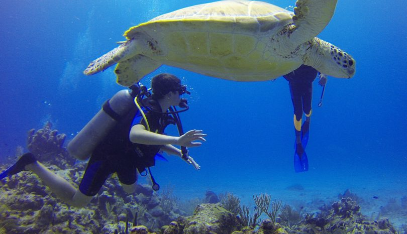 What To Expect On A Boracay Scuba Diving Trip