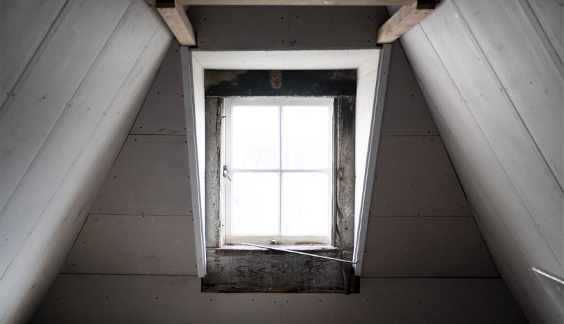Why You Need Professional Attic Insulation Removal Services