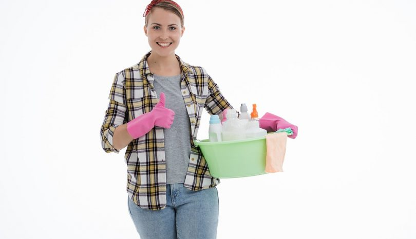 How To Choose The Best Crawl Cleaning Services