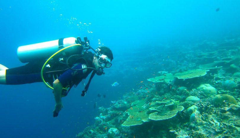 Exploring The Best Scuba Diving Sites