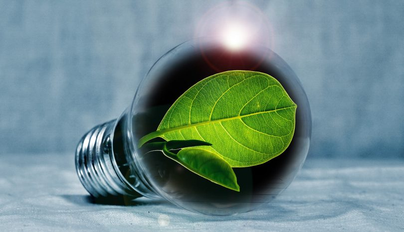 Eco Friendly Projects For Your Home