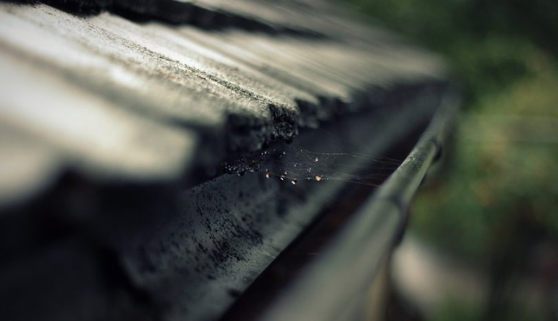 What You Should Know About Gutter Repair And Gutter Cleaning Rushden Services