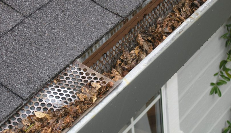 How To Find The Best Gutter Cleaning Services In Peterborough