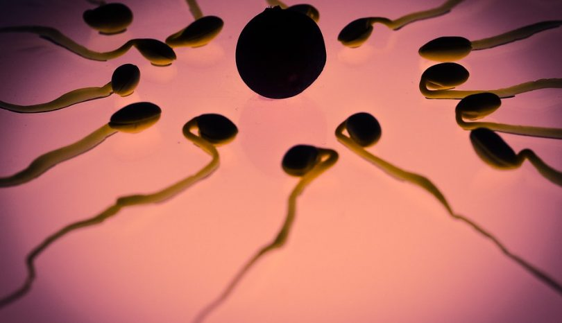 Sperm Preservation Options: Financial Considerations