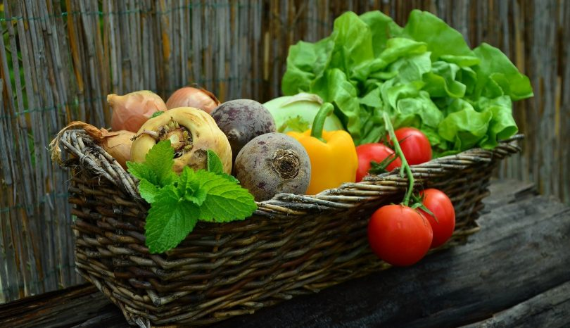 What To Look For In A Food Subscription Service